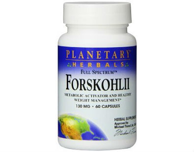 Planetary Herbals Forskohlii supplement for weight loss