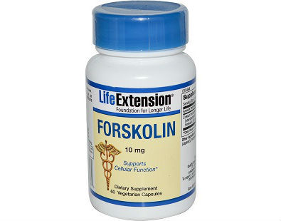 Life Extension Forskolin Supplement